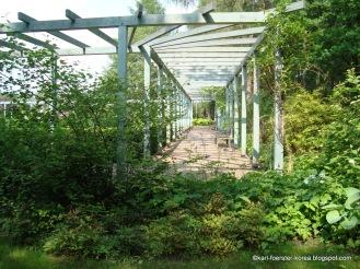 1-Marzahn-Karl-Foerster-Garten-7309