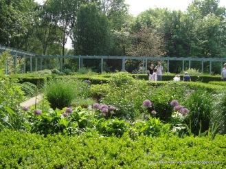 1-Marzahn-Karl-Foerster-Garten-7350